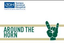 Around the Horn / The best of the Bulls / by USF Athletics