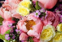 All things Floral... / I love flowers.  I love them in arrangements, growing in a garden, floral fabrics, floral paintings...pretty much anything floral.  Please join me in pinning your favorite floral images. ~my heartfelt thanks to all of the amazing pinners on this board, I am grateful daily for your lovely pins and personal support.~ I love all your pins but let's limit them to 10 a day:-).