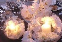 Wedding Theme   Beach / Inspiration for the perfect beach destination wedding