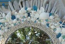 shells' diys