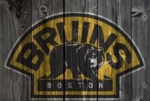 Boston Bruins. / On ice