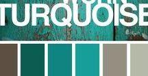 Color Theme's