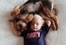 Cute! / The most beautiful images to view