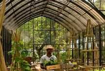 Greenhouse <3 / Beautiful greenhouses of the past and present...