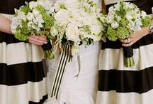 Real Wedding: Modern San Francisco / by Shannon Leahy Events