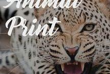 ANIMAL PRINT / Sexy Animal Print Accessories