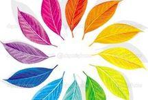 Color Scheme /  Listen to the colour of your dreams
