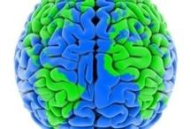 International Education/Intercultural Competence
