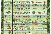 Household / Gardening