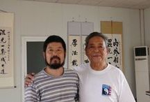 Taijiquan & Related Topics / As a teacher and practitioner of Taijiquan, I think it is fitting to have a board dedicated in organizing some great pictures, articles and videos on the web.