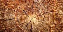 Wood / Wood grain types.