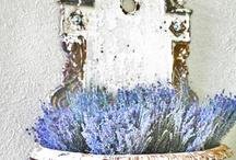 Lavendel / by eenentwee
