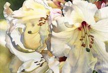Art Watercolor / Art