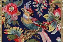 Tropical Birds & Butterflies