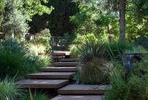 Mood board tuin / Dit is een moodboard voor het ontwerpen van een tuin.