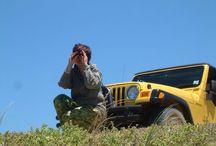 Jeep / Jeep........s