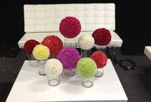 Corporate Events by The Lone Hydrangea