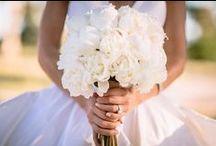Weddings by The Lone Hydrangea