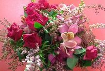 Flowers by The Lone Hydrangea / All arrangements made at The Lone Hydrangea