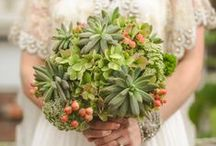 Theme: Succulent San Diego / Your special day immersed in the lush botanical beauty of historical San Diego
