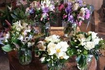 Posies for The Home