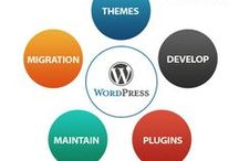 Wordpress Services by WP Expert from India / Wordpress web development, Theme, plugin develop and customisation, WP maintenance Services from india at best lowest price quote paackage by WP expert India