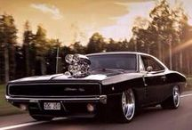 Muscle car enthusiast