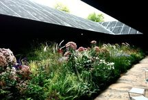 Landscape architecture - outdoors