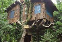 Tree house / Dům na stromě / Inspirace