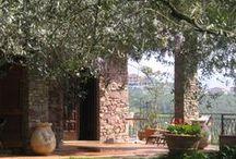Il mio B&B Alle Mimose a Vezzano Ligure La Spezia / Ad un passo dalle Cinque Terre sulle colline di Vezzano Ligure  Sito internet: http://www.allemimose.it   Blog: http://allemimose.blogspot.it
