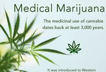 Medical Marijuana / Medical Marijuana @secondopiniontv / by Second Opinion