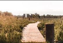 Welle8: Holzweg - Außen / Grundfläche: 50 x 1m  Besonderheiten: Brettersteg aus Lärchenbrettern windet sich vom Hintergarten entlang der Lärchenplatform hin zum Teich im hinteren Abschnitt der wilden Blumenwiese.  Zufahrt: Durch den Schauer (4,5 x 3,2m)  http://welle8.com/