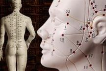 Acupuncture / Acupuncture / Alternative Medicine / Eastern Medicine / by Second Opinion