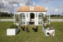 PETIT TRIANON MINI FARM - Neiman Marcus Christmas Book / We've designed simple and elaborate coops & hen huts for our clients but our most elegant design is Petit Trianon our Bespoke Mini Farm (as featured in Neiman Marcus). The inspiration behind it is inclusive of a hen's every instinct, and Marie Antoinette's Palace of Versailles. When flustered on the final design, Svetlana noticed her bottle of Houbigant's Quelques Fleurs. Suddenly, the design came together, because this scent was Marie Antoinette's parfum and she was the first Gentile Farmer.