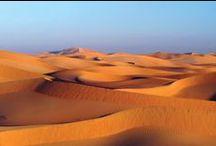 Flora & Fauna | Oman