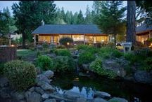Cottage Rentals / Looking for Washington Cottage Rentals? If you are taking your vacation in Washington State you will find useful information on vacation rentals in Washington State at http://www.alderbrookresort.com/guesthouses / by Alderbrook Resort & Spa