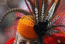 Plumed hat and dress / Magyar közmondás: Madarat tolláról, embert barátjáról  lehet megismerni.  Más tollával ékeskedni  nem illik.