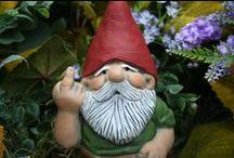 GNOMES!!!   ?LOL