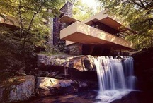 Design King Frank Lloyd Wright