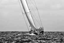 _Sailing_ / by Christian Radmilovitch