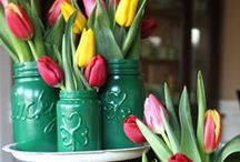 Holiday: St. Patrick's Day / St. Patrick's day activities, decoration, gifts, and food