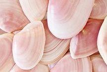 summer in soft pink