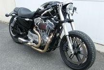 Harley !