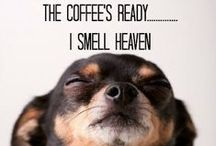 Coffee / I´m addicted to coffee
