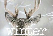 ☃ Winter