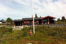 Solbø - mountain cabin / Natur og aktivitet på Elgåsen i Ringsakerfjellet
