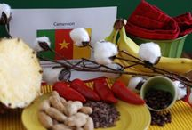 Cameroon / About the food and culture of Cameroon. Join the culinary journey around the world and get the recipes at http://www.internationalcuisine.com it's free!