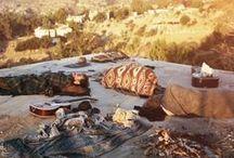 Lost paradises / 70's, Los Angeles, Desert, Cactus, vintage