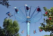 Things to do in Pigeon Forge / There is no shortage in fun things to do in Pigeon Forge, TN. You will find unlimited dining options, attractions, dinner & shows and so much more!