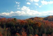 Great Smoky Mountains National Park / Beauty at every turn